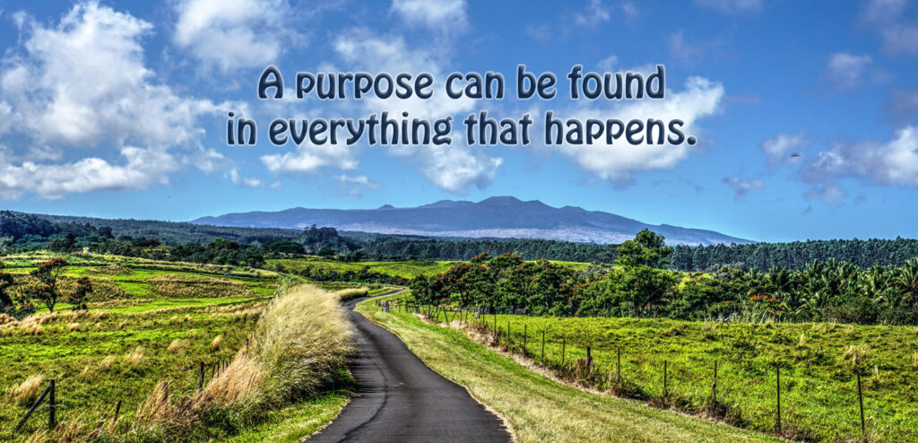 Everything Happens for a Purpose